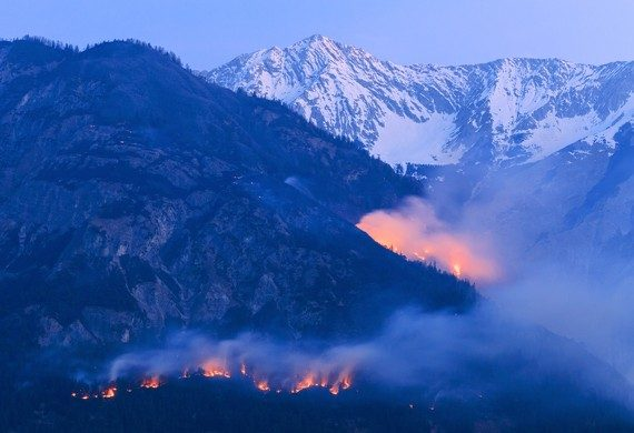 Picture shows a forest fire.